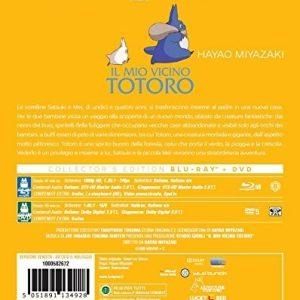 Il Mio Vicino Totoro Steelbook 2 Blu Ray retro tuttogiappone